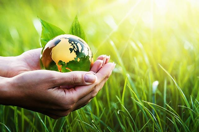 Klima- und Umweltschutz in Rottweil